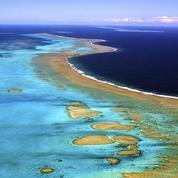 Sommet sur les océans: «Pourquoi la mer sera à l'origine d'une nouvelle révolution économique»