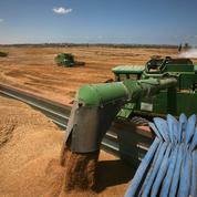 Le blé en nette hausse, les échanges soutenus