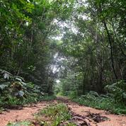 L'Unesco annonce 20 nouvelles réserves de biosphère dans 21 pays