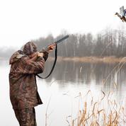 Le gouvernement veut réautoriser des chasses traditionnelles d'oiseaux