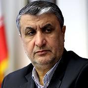 Iran : le chef du nucléaire veut une refonte rapide du réacteur d'Arak