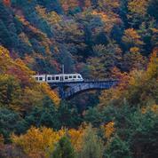 Des Abruzzes à la Sicile, les plus beaux trains touristiques pour parcourir l'Italie à petite vapeur