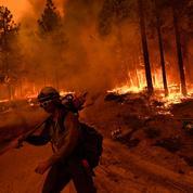 Californie: le fournisseur d'électricité PG&E accusé d'homicides après un feu de forêt