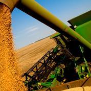 Le soja chute, le blé grimpe après des rapports sur les stocks et la production