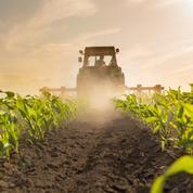 Chicago : le blé au plus haut en six semaines