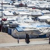 Syrie : appel de parlementaires français au rapatriement de 200 enfants et leurs mères