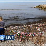 En pleine crise des poubelles, la métropole Aix-Marseille épinglée pour sa gestion des déchets