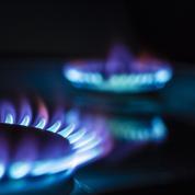 Flambée des prix du gaz: le Qatar se dit «mécontent» mais impuissant