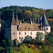«Touche pas à mon château» : le combat d'un village pour sauver La Rochepot en Côte-d'Or
