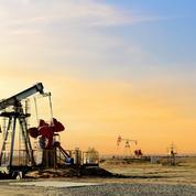 Le pétrole proche de ses sommets, la Russie estime «rationnelle» l'idée d'un Opep du gaz