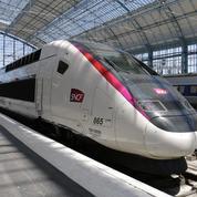 L'Assemblée vote la suppression de deux taxes pesant sur les TGV