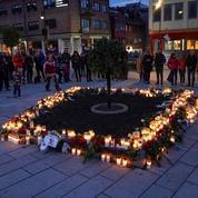 Attaque à l'arc en Norvège : la piste de la «maladie mentale» privilégiée