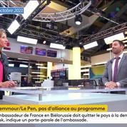 Présidentielle : Julien Odoul souligne la «nécessité de se rassembler» autour de Marine Le Pen