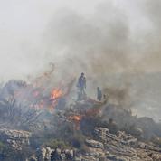 Syrie : le régime exécute 24 personnes pour avoir provoqué des incendies en 2020