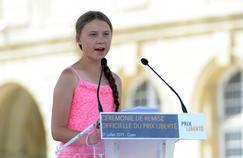 Climat: des députés LR appellent au «boycott» du discours de Greta Thunberg à l'Assemblée