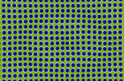 Pourquoi notre cerveau se laisse-t-il berner par les illusions d'optique ?