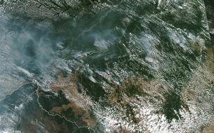 Le Brésil «prie» pour la forêt amazonienne en proie aux flammes