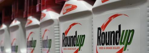 Procès Monsanto: un jury américain estime que le Roundup a contribué au cancer du plaignant