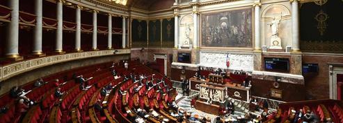 Bioéthique : l'Assemblée rejette de justesse la PMA post-mortem