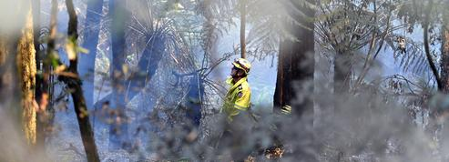 Australie : 40,9°C mardi, journée la plus chaude jamais mesurée