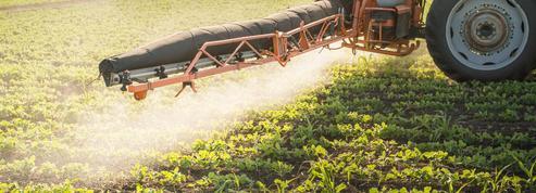 Décret sur les pesticides : une association va saisir la justice