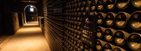 Le coronavirus fait chuter les ventes d'alcool, la filière viticole boit la tasse