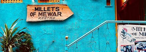 Pépites de quartier ou grands classiques: nos tables préférées au Rajasthan