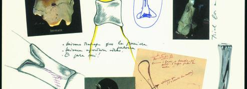 Tiffany fête l'anniversaire d'Elsa Peretti, pionnière du design joaillier