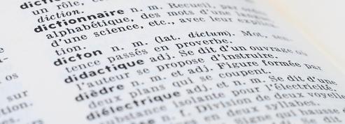 «Féminicide», «remontada»... Les nouveaux mots du Petit Larousse