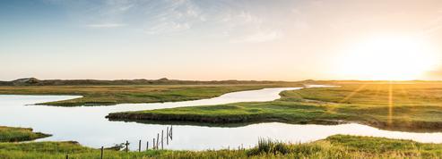 Entre plages et dunes, direction le Zwin Parc Nature, perle du littoral belge