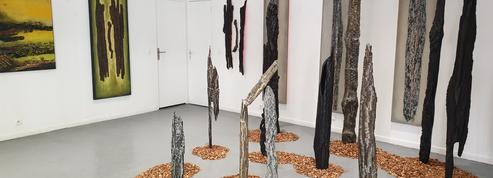 «Feux de tous bois», une exposition qui respire la nature