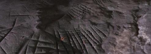 En forêt de Fontainebleau, les dernières traces de l'homme de Cro-Magnon se lisent dans les rochers