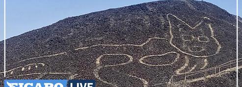 Un chat vieux de 2000 ans et grand de 37 mètres redécouvert aux abords du plateau de Nazca