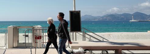 Le festival de Cannes relève la tête le temps d'une édition symbolique