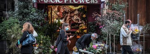 «C'est un drame absolu» : les fleuristes en galère poussent un cri d'alarme