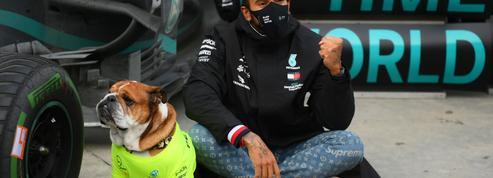 Pourquoi l'anoblissement de Lewis Hamilton divise la Grande-Bretagne