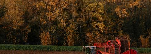 Suicide des agriculteurs : le Sénat ouvre une consultation en ligne, appelle les proches à témoigner