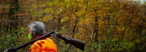 Ariège : l'agresseur présumé d'un chasseur en pleine battue mis en examen