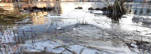 Deux adolescents de Belfort sauvent un enfant et son père dans un étang glacé