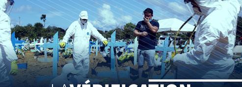 Covid-19 : l'exemple du Brésil montre-t-il l'échec de l'immunité collective ?