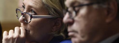Marine Le Pen et Gilbert Collard jugés ce mercredi pour avoir tweeté des photos d'exactions de Daech