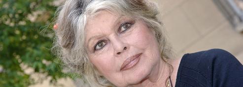 Brigitte Bardot renvoyée devant le tribunal d'Arras après avoir flingué les chasseurs