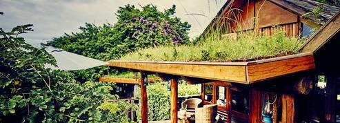 Maison d'hôtes, hôtels ou lodges... Dix hébergements pour se la couler douce à La Réunion