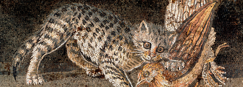 En Égypte, plus de 500 chats reposaient dans une nécropole du I-IIe siècle réservée aux animaux