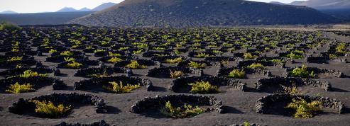 48 heures à Lanzarote, l'île aux paysages lunaires