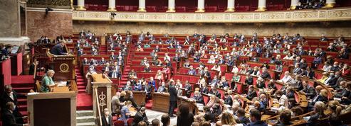 Climat dans la Constitution : l'Assemblée nationale adopte largement le texte