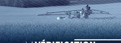 Les «nouveaux OGM» sont-ils vraiment sans risque pour l'environnement ?