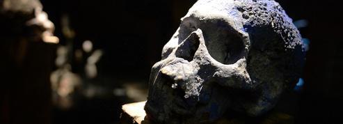 «Ce sorcier a anéanti l'avenir de mes enfants» : voyage au royaume de l'occulte, où l'arnaque est reine