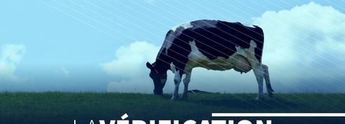 La viande est-elle (vraiment) mauvaise pour la planète ?
