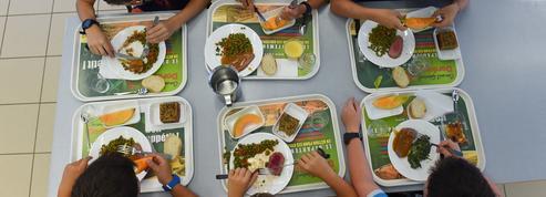 Menus sans viande à Lyon : la mairie écologiste annonce le retour de la viande dans les cantines scolaires